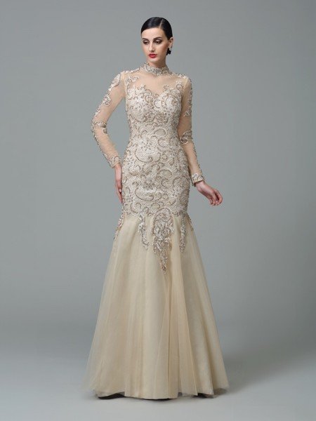 Sheath/Column High Neck Applique Long Sleeves Long Net Dress